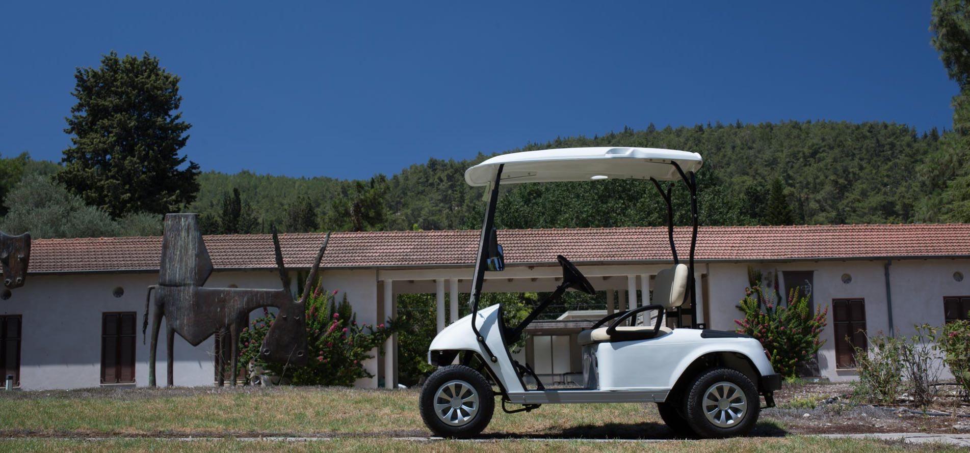 בלתי רגיל רכב גולף MARSHELL - מטרו 4 גלגלי EP-09